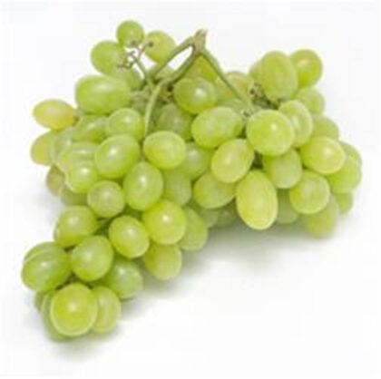 Grapes White Seedless ~ Organic ~ per punnet