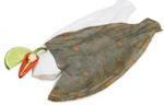 Tregida Cornish Plaice Fillets ~ 300g Approx