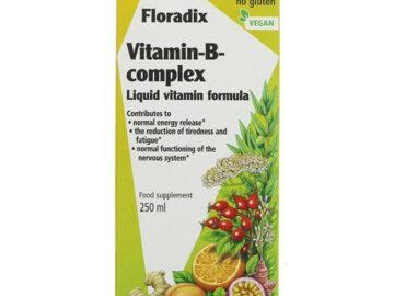 Floradix Vitamin-B-Complex Liquid Vitamin Formula