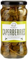 Brindisa Caperberries