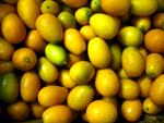 Kumquat ~ Organic ~250g