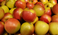 Apples Braeburn ~ Organic ~ 500g