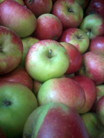 Apples Discovery ~ Local to us ~ Organic ~ 500g