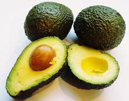 Avocado Hass ~ Organic