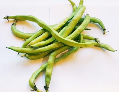Beans Broad ~ Organic ~ 500g