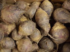 Beetroot Loose ~ Organic ~ 500g