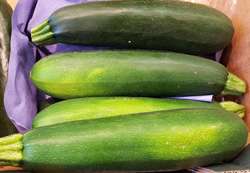 Courgettes ~ Organic ~ 500g