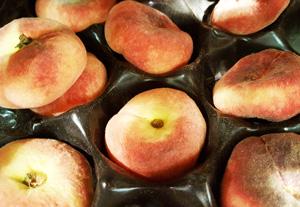 Peaches Doughnut ~ 250g approx ~ Organic