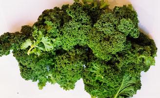 Kale ~ Organic