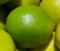 Limes ~ Organic