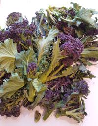 Purple Sprouting Broccoli ~ Organic~ 200g