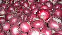 Onions Red ~ Organic ~ 500g