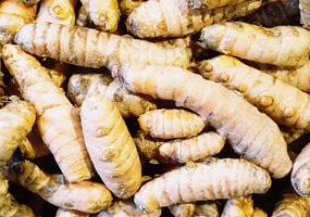 Turmeric Root ~ Organic ~ 100g