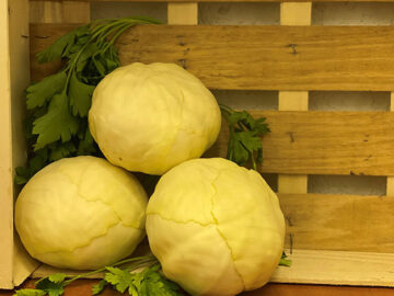 Cabbage White ~ Organic
