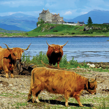 "Greetings Card ""Duart Castle, Isle of Mull """