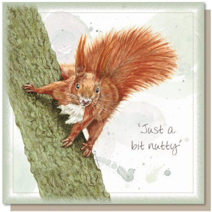 'Just a Bit Nutty' Greetings Card
