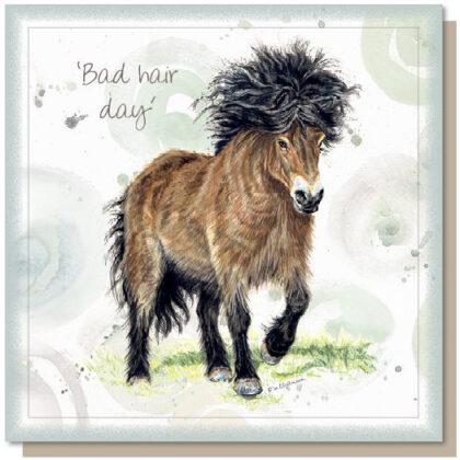 'Bad Hair Day' Greetings Card