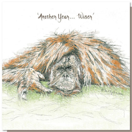 Another year…wiser Greeting Card